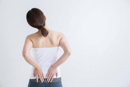 姿勢を左右する腰