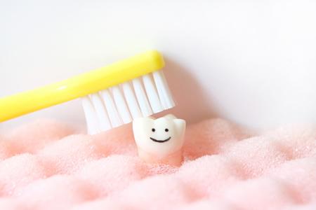 自分の歯であることの価値とは?